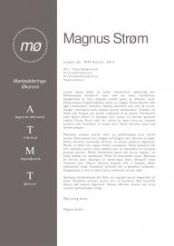 Jobsøgning skabelon - Magnus Strøm